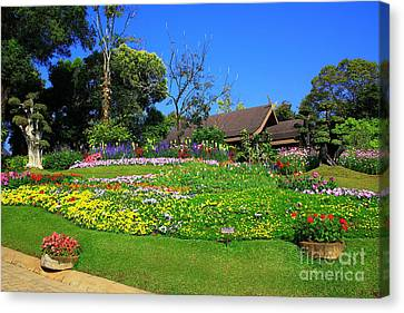 Home Gardening Zones Canvas Print by Boon Mee