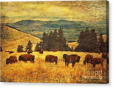 Home On The Range Canvas Print by Lianne Schneider