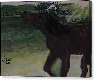 Home Sweet Horse Canvas Print by Katrina Ricci