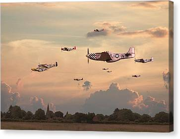 P51 Canvas Print - Home To Roost by Pat Speirs