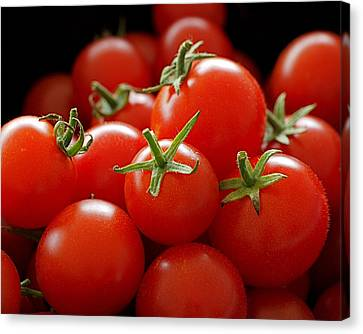 Tomatos Canvas Print - Homegrown Tomatoes by Rona Black