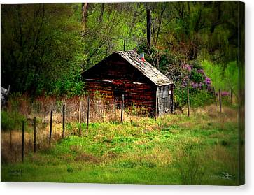 Homestead - Vaseux Lake Canvas Print by Guy Hoffman