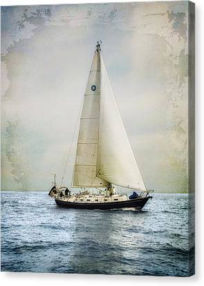 Homeward Bound Canvas Print by Karen Lynch