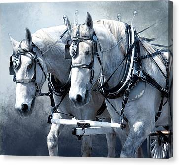 Canvas Print featuring the digital art Homeward Bound by Mary Almond