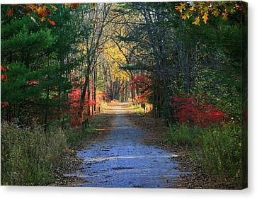 Homeward Bound Canvas Print by Neal Eslinger