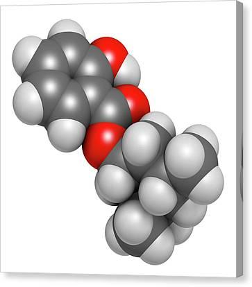 Homosalate Sunscreen Molecule Canvas Print by Molekuul