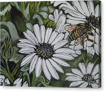 Honeybee Taking The Time To Stop And Enjoy The Daisies Canvas Print by Kimberlee Baxter
