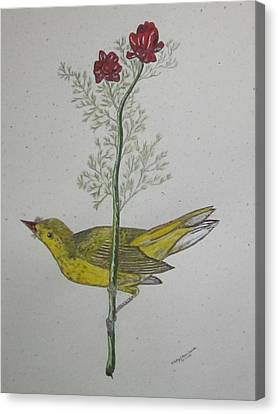 Hooded Warbler Canvas Print by Kathy Marrs Chandler