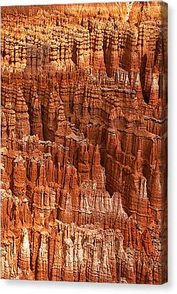 Hoodoos Canvas Print - Hoodoos Of Bryce by Andrew Soundarajan