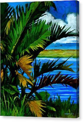Hoomaluhia 1 Canvas Print by Douglas Simonson