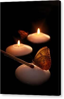 Hope Lights A Flame Canvas Print by Chrystyne Novack