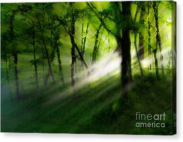 Hope Lights Eternal - A Tranquil Moments Landscape Canvas Print by Dan Carmichael