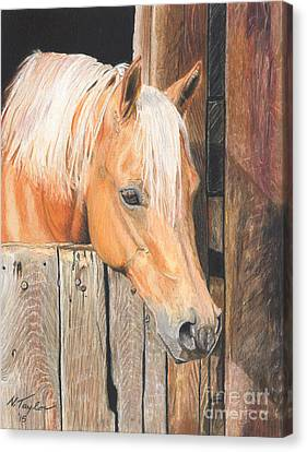 Stable Canvas Print - Hope by Nichole Taylor