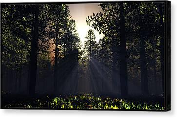 Hope Springs Eternal... Canvas Print