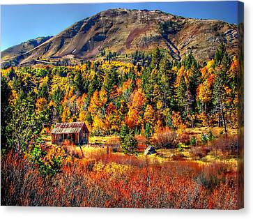 Hope Valley Fall Color Canvas Print by Scott McGuire