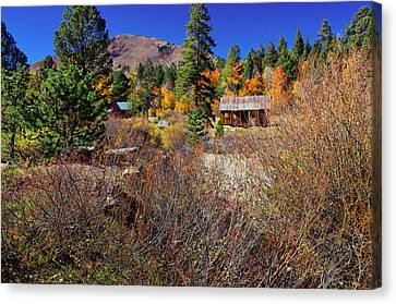 Hope Valley Fall Colors Canvas Print by Scott McGuire