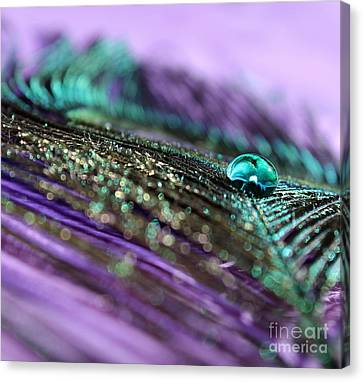 Hopeful Canvas Print by Krissy Katsimbras