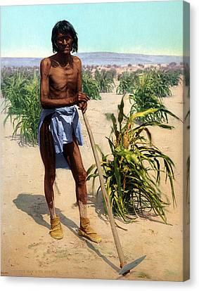 Hopi Farmer, C1902 Canvas Print by Granger