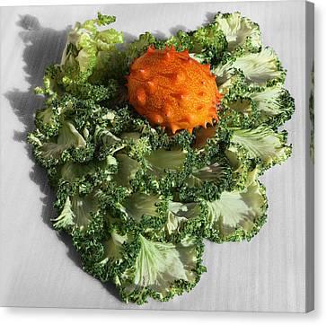 Horned Melon On Kale Canvas Print