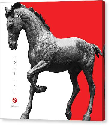 Horse 3 Canvas Print by David Davies