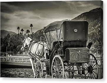 Horse And Buggy Canvas Print by Camille Lopez