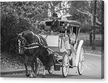 Horse And Buggy Central Park  Canvas Print by John McGraw