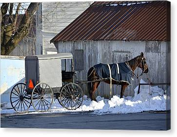 Horse And Buggy Parked Canvas Print