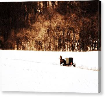 Horse And Buggy Canvas Print by Vicki Jauron