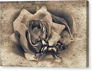 Horse And Rose Canvas Print