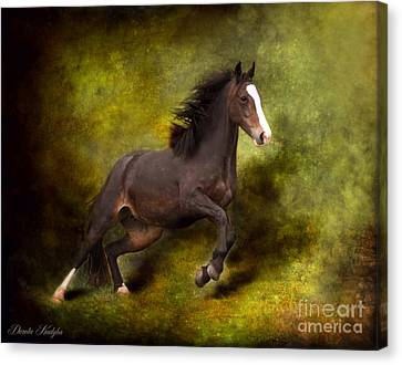 Horse Angel Canvas Print