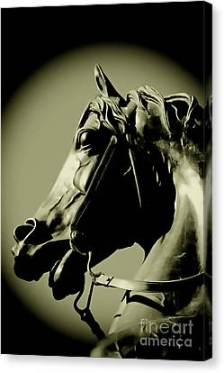 Horse Bronze Canvas Print