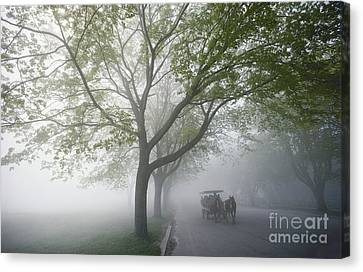 Horse Carriage Canvas Print by James L. Amos