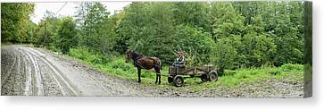 Horse Cart At Roadside, Bradu, Arges Canvas Print by Panoramic Images