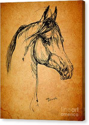 Horse Drawing Canvas Print