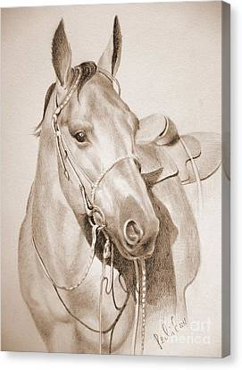 Canvas Print featuring the drawing Horse Drawing by Eleonora Perlic