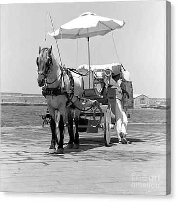 Horse Drawn Carriage In Crete Canvas Print