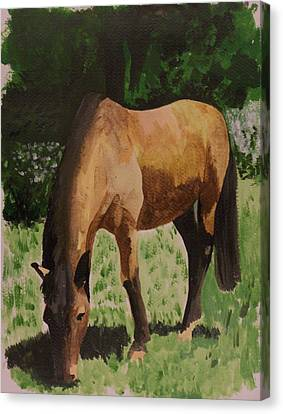Horse Canvas Print by Isabella F Abbie Shores FRSA