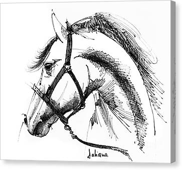 Horse Face Ink Sketch Drawing Canvas Print by Daliana Pacuraru