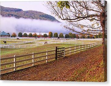 Horse Farm Autumn Canvas Print by Tom Singleton