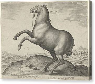 Horse From Scythia, Hieronymus Wierix, Philips Galle Canvas Print by Hieronymus Wierix And Philips Galle