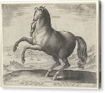 Horse From Southern Italy Appulus, Hieronymus Wierix Canvas Print by Hieronymus Wierix And Philips Galle