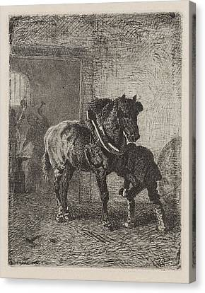 Horse Gets Horseshoes In A Forge, Cornelis Albertus Canvas Print