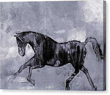 Greyscale Canvas Print - Horse Greyscale by Lutz Baar