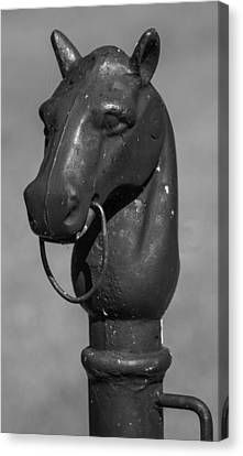 Canvas Print featuring the photograph Horse Head Hitching Post by Robert Hebert