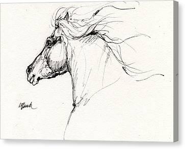 Horse Head Study 2014 05 28 Canvas Print