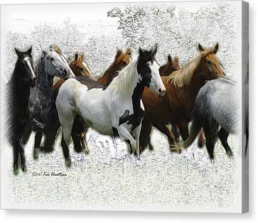 Horse Herd #3 Canvas Print