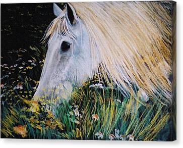 Horse Ign Canvas Print by Eliso  Silva