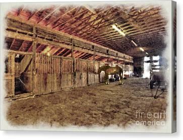 Horse In Barn Canvas Print by Dan Friend