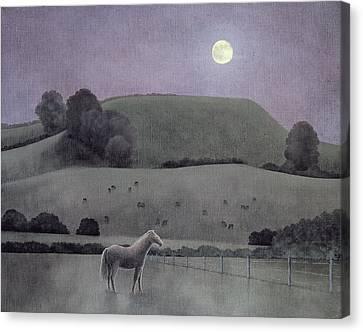 Horse In Moonlight, 2005 Oil On Canvas Canvas Print by Ann Brain