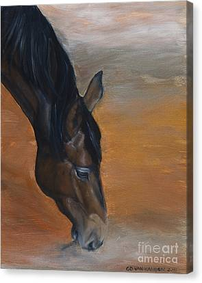 Canvas Print featuring the painting horse - Lily by Go Van Kampen